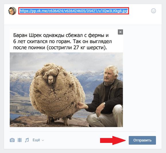 Вставить ссылку из интернета В Контакт