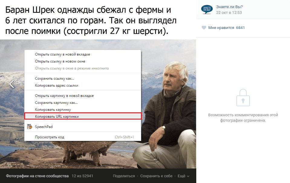 Копировать URL картинки